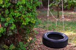 Tire swing: Tire and rope hanging from an old tree. Beautiful nature background. Hanging rubber tire under the tree. Selective focus. Copy space for any design.
