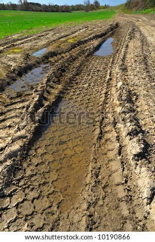 Tire tracks in muddy rural road