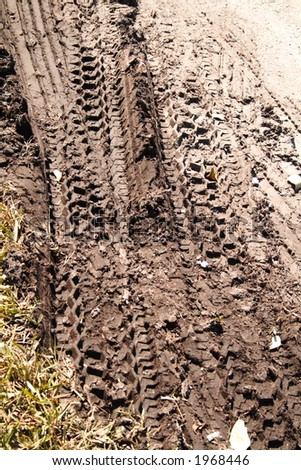 tire tracks in the mud