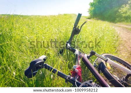 Tired bicycle lying in the grass at the roadside #1009958212
