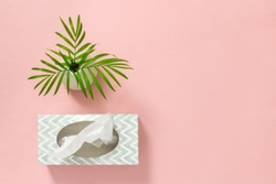 Tissue box and palm leaves in a vase, on pastel pink background.