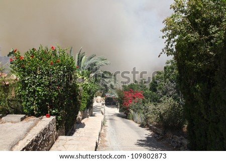 TIVON, ISRAEL - AUGUST 09:Forest fire breaks out in Kiryat Tivon. Rescue workers struggle to prevent further damage. Tivon, Israel August 09, 2012