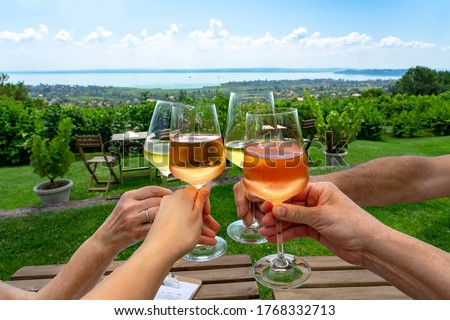 toast with wine in a vineyard bar with a nice view of Lake Balaton on a nice summer day with family friends . Stock photo ©