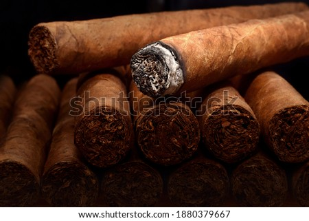 Tobacco cuban havana cigars romeo and julia burned with ash. Beautiful macro background in low key. Foto stock ©