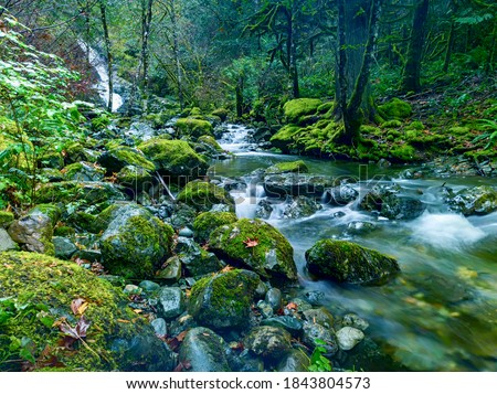 Todd Creek's Late Fall Landscape Series-Long exposure photo of the stunning scenery of Todd Creek small cascade waterfall seen through mossy rocks and trees wet in the fall rain 02. Stock fotó ©