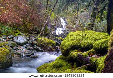 Todd Creek's Late Fall Landscape Series-Stunning scenery at Todd Creek small cascade waterfall seen through mossy wet rocks 01. Stock fotó ©