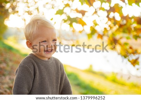 Toddler boy blue eyes enjoy autumn. Small baby toddler on sunny autumn day. Warmth and coziness. Happy childhood. Sweet childhood memories. Child autumn leaves background. Warm moments of autumn.