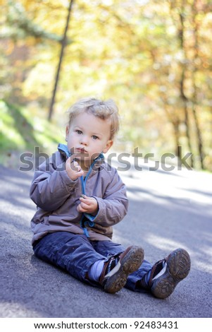 Toddler boy, child, sitting on a path outdoors, fall foliage scene