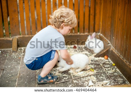 Toddler boy play with the rabbits in the petting zoo #469404464
