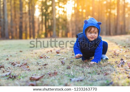 Toddler boy playing outside on an autumn day #1233263770
