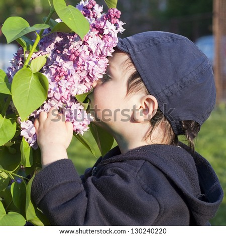 Toddler boy smelling purple lilac flowers in a garden.