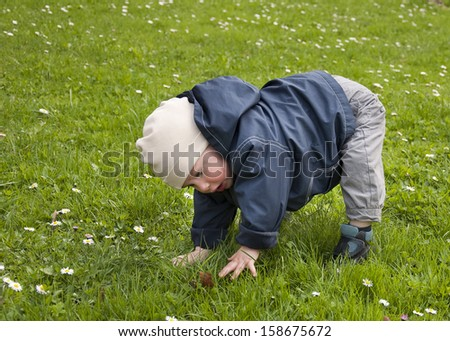 Toddler child, boy or girl, learning to walk, trying to get up from grass lawn.