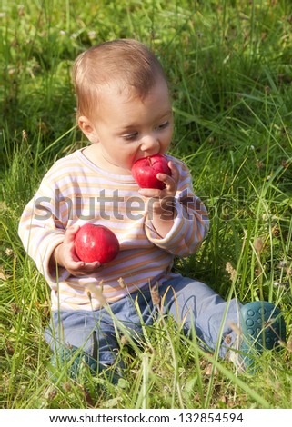 Toddler child sitting in a grass in a garden eating fresh apples.