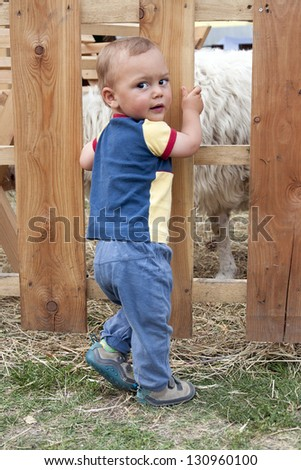 Toddler child standing in front of a wooden fence of sheep enclosure at a farm or in a pet zoo.