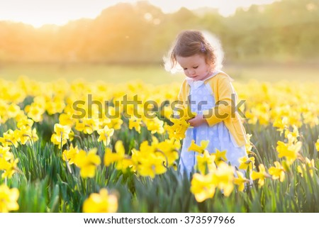 Toddler girl playing in daffodil flower field. Child gardening. Kid picking flowers in the backyard. Children working in the garden. Kids taking care of plants. First spring blossoms. Easter egg hunt. #373597966