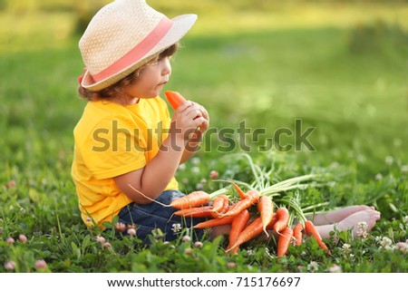 Toddler kid on a farm wearing straw hat, holding bunch of carrot, eating organic vegetable, healthy food for little child