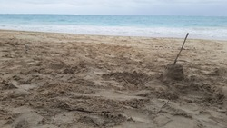 Toddler stick castle in fine khaki sands on overcast Windward Oahu, Hawaii beach with small surf.