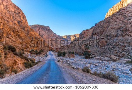 Todgha Gorge or Gorges du Toudra is a canyon in High Atlas Mountains near the town of Tinerhir, Morocco #1062009338
