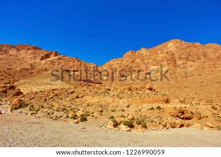 Todgha Gorge or Gorges du Toudra is a canyon in High Atlas Mountains near the town of Tinerhir, Morocco #1226990059