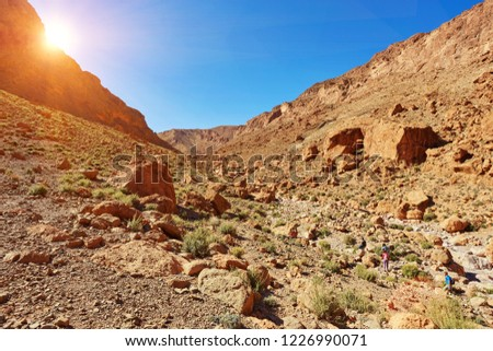Todgha Gorge or Gorges du Toudra is a canyon in High Atlas Mountains near the town of Tinerhir, Morocco #1226990071