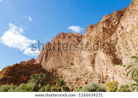 Todra gorges in Morocco #1266634231
