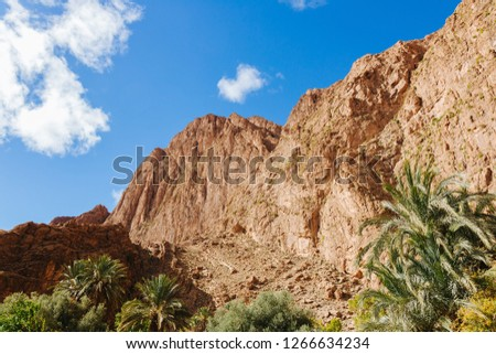 Todra gorges in Morocco #1266634234
