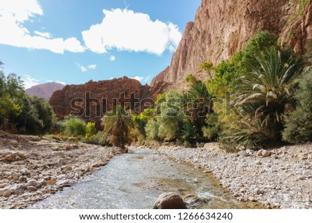 Todra gorges in Morocco #1266634240