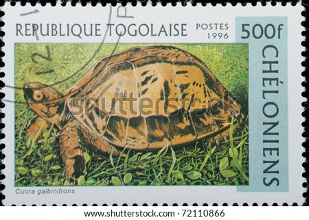 TOGO  - CIRCA 1996: A stamp printed in Togo  shows animal reptile turtle Cuora galbinifrons, circa 1996