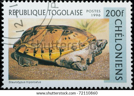 TOGO - CIRCA 1996: A stamp printed in Togo shows animal reptile turtle Staurotypus triporcatus, circa 1996