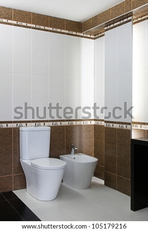 Toilet and bidet seat in new bathroom