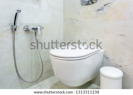 toilet and detail of a corner shower bidet with wall mount shower attachment