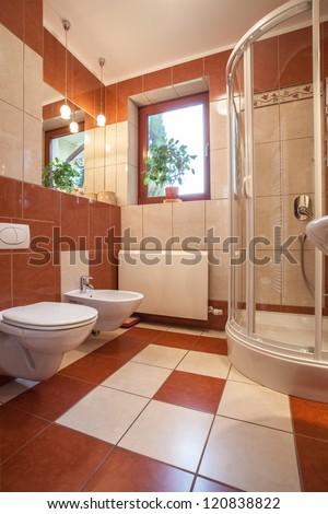 Toilet, bidet and shower in new bathroom