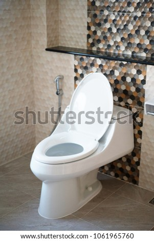 Toilet bowl and bidet shower, Thailand.