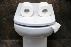 Toilet bowl with two rolls of paper similar to eyes or glasses. Funny concept of running out of toilet paper
