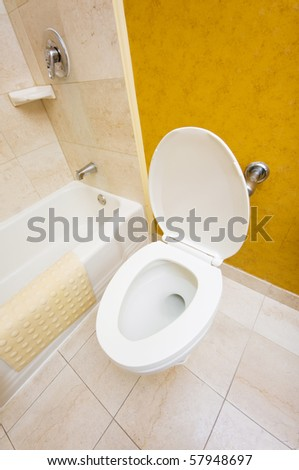 Toilet in the bathroom