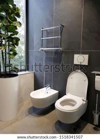 toilet with window, toilet, bidet, toilet paper holder, electric dryer and indoor plant #1518341507