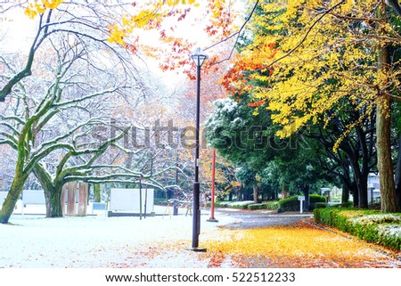 Tokyo area gets first November dusting of snow in 54 years.  - Shutterstock ID 522512233