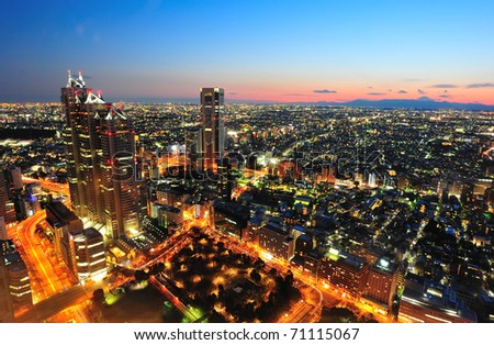 Tokyo city and Mt. Fuji in twilight