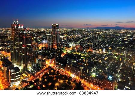 Tokyo City and Mt Fuji in twilight