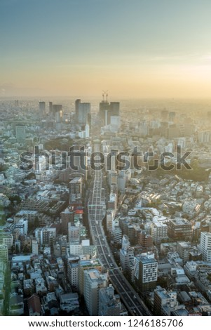 Tokyo hazy day with its elevated highways