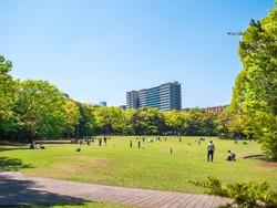 Tokyo, Japan:  A park nearby the residential area.  People spend their time relaxing under the blue sky on sunny day.