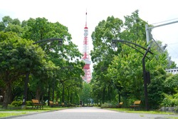 Tokyo Japan, landscape soft focus of Shiba Park in Minato area Tokyo, Japan which Tokyo Architect Tower, symbolic of Tokyo as background. The unspecified people is walking and resting in the park.