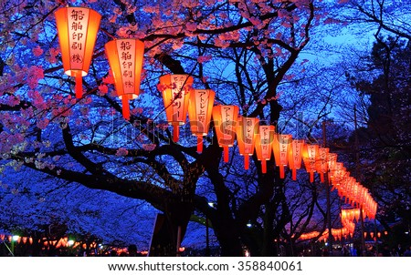 Tokyo, Japan - March 27, 2004: Beautiful light and colours of Japanese lanterns and cherry blossoms in Cherry-Blossom Viewing (O-Hanami) Festival at Ueno park, Tokyo, Japan on March 27, 2004.