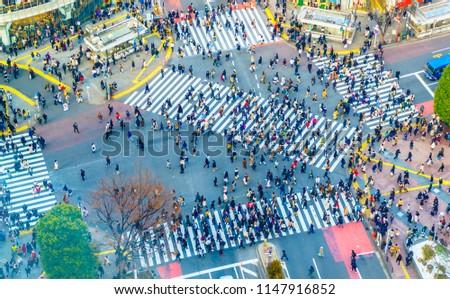 Tokyo, Japan view of Shibuya Crossing  the busiest crosswalks in the world