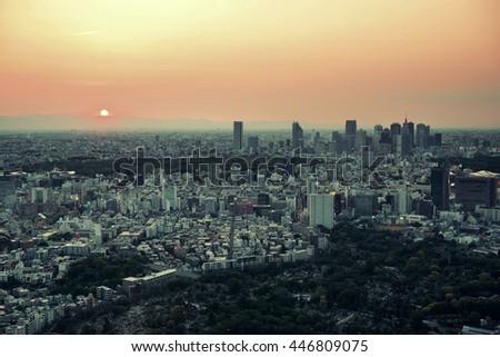Tokyo urban skyline rooftop sunset view, Japan. #446809075