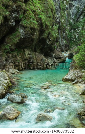 Tolmin Gorge, Tolmin, Slovenia - May 18, 2019: The turquoise, crystal clear water of the Tolminka River crosses the forest, surrounded by large rock formations, in Soča Valley. #1438873382