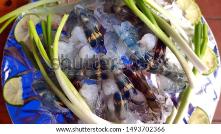 Giant river prawn (Macrobrachium rosenbergii) Free Images