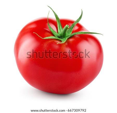 tomato #667309792