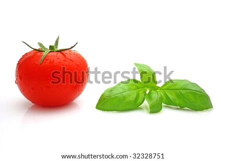 Tomato basil - stock photo