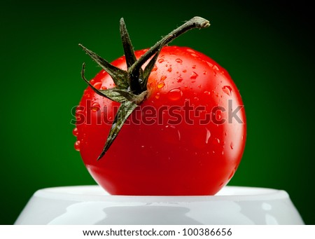 tomato branch with water drops on dark green background